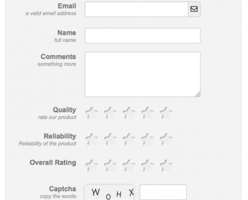 Product Review-Form-Basic-Fields